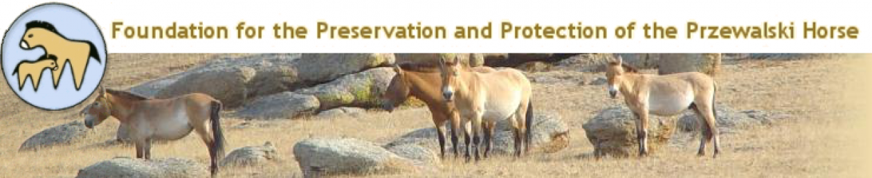 Foundation for the preservation and protection of the Przewalski Horse